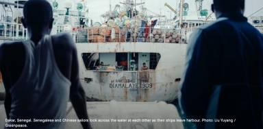 Arrivée massive de bateaux chinois et turcs: menace sur les ressources et les communautés de pêche artisanale-1