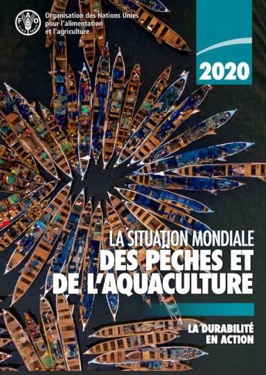 La situation mondiale des pêches et de l'aquaculture FAO 2020-1