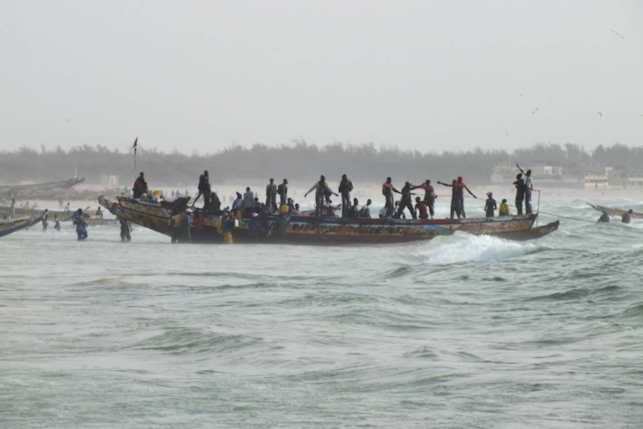 Surexploitation et changement climatique : au Sénégal, la pêche est en danger !