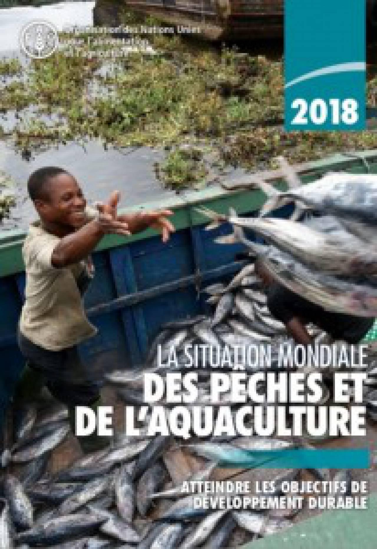 La situation mondiale des pêches et de l'aquaculture