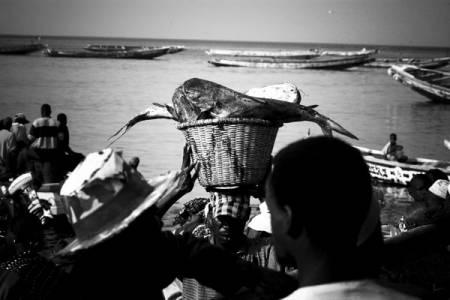 Halte au pillage de la mer