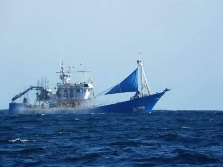 Délivrance non conforme à la loi d'autorisations de pêche à des thoniers canneurs étrangers