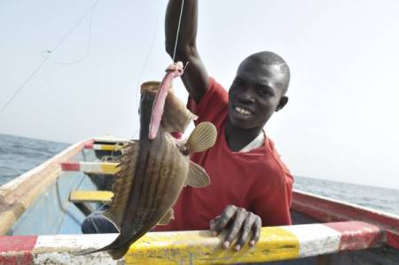 A qui appartient le poisson ?