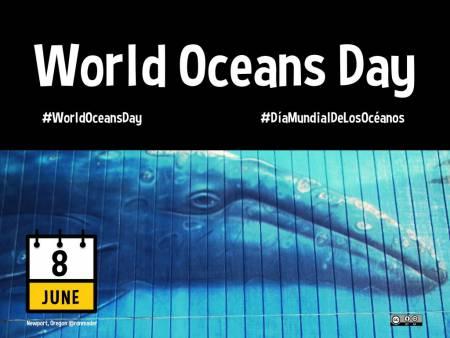 Journée Mondiale des Océans : le 08 Juin 2011