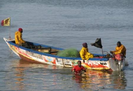 Le rôle de la recherche dans la gestion durable de la ressource halieutique