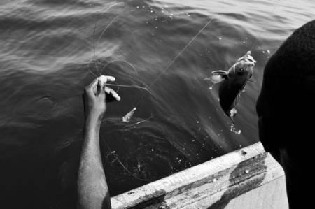 Etat des lieux sur la proposition d'accord de pêche entre l'UE & le Sénégal