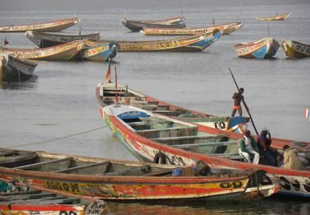 Déclaration de Praia lors de la journée mondiale de la pêche du 21 novembre 2013