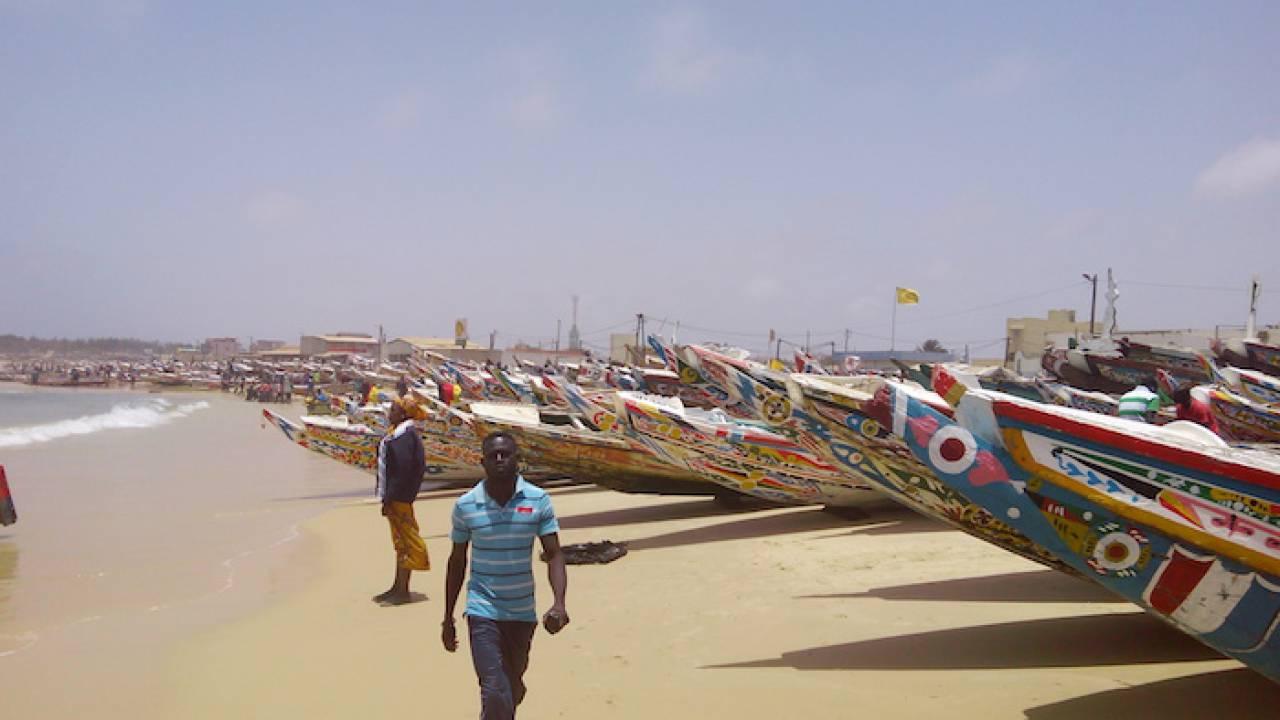 Transparence dans la gestion du secteur des pêches au Sénégal : Quelle stratégie pour le développement durable de la pêche ?