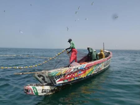 Danger sur les côtes de Mbour : les pêcheurs sommés de ne pas s'approcher à moins de 1000 m.