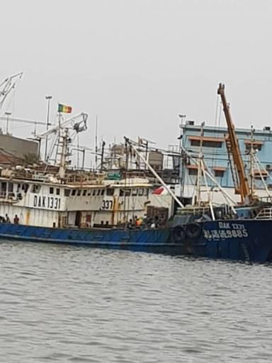 """Fausse """"sénégalisation"""" des navires chinois : après l'arachide, les chinois piratent le poisson local-1"""