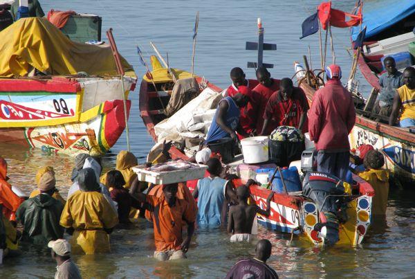 """Au Sénégal, la colère gronde contre le pillage du poisson par les bateaux """"étrangers"""""""