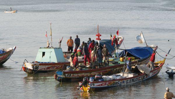 Directives volontaires pour garantir des pêches artisanales durables