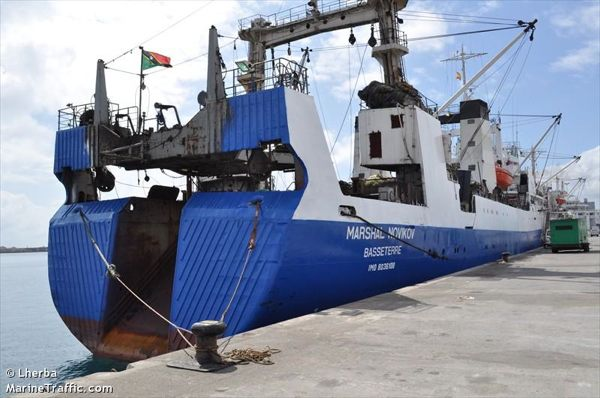 Entre 11 et 26 millions de tonnes de poisson sont pêchées illégalement chaque année dans le monde